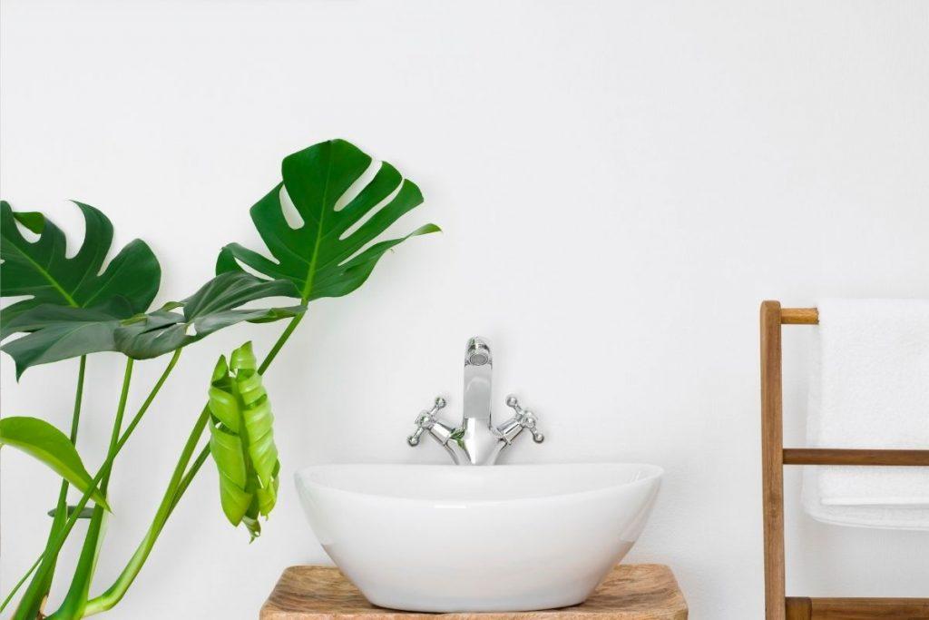 come creare una casa sana - Canva